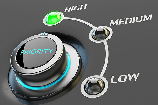 The Priority Training Principle
